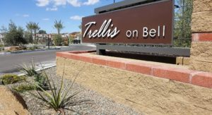 Trellis On Bell Homes For Sale